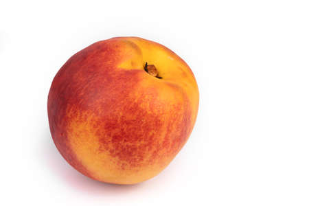 one ripe yellow nectarine fruit with large red spots is depicted on a white background close to the left