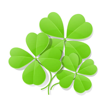 saint patricks: clover four leaf for saint patricks day vector illustration isolated on white background.