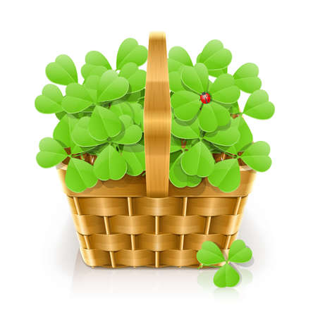 basket with clover vector illustration isolated on white background. Stock Vector - 12328989