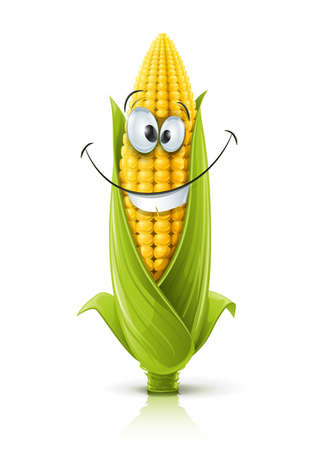 corn: corncob vector illustration color on white background