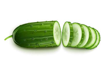 rijpe komkommer gesneden segment vector illustratie geïsoleerd op een witte achtergrond. Transparante objecten gebruikt voor schaduwen en lichten tekenen Vector Illustratie