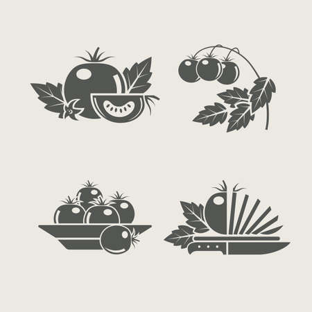 tomato products set icons vector illustration Stock Vector - 12437661