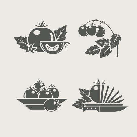 tomato: tomato products set icons vector illustration