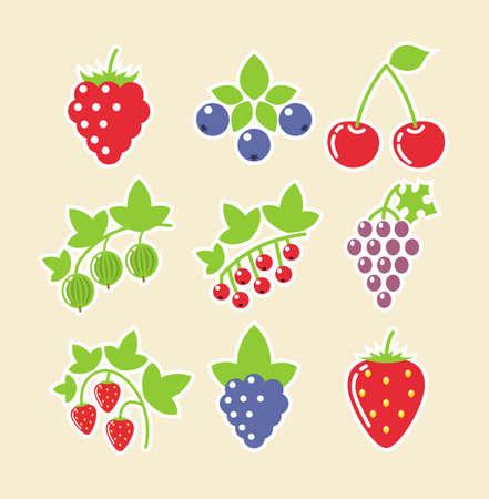 grosella: conjunto de la baya ilustración vectorial icono de los alimentos