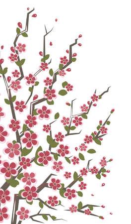 vermilion: Sakura branch.