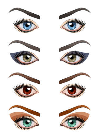 brows: Womans eyes with make-up. Eps10 vector illustration. Isolated on white background Illustration