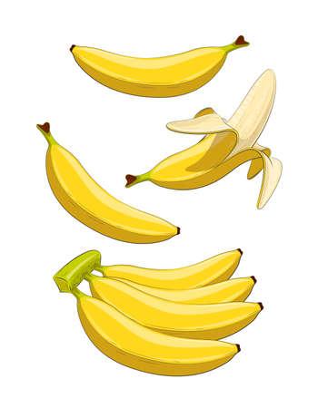 ingestion: Banana. Tropical fruit. Set of  Eps10 vector illustrations. Isolated on white background