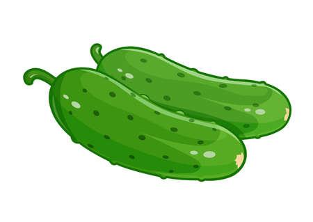 eps10: Couple cucumber vector illustration, Eps10 Isolated white background Illustration