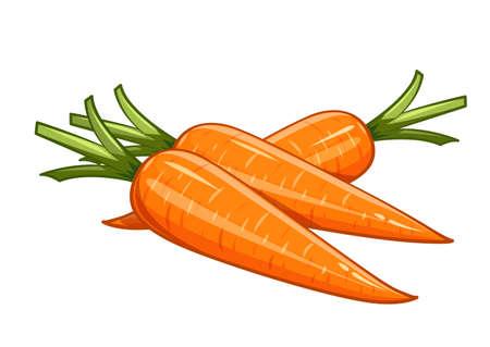 Carrot vector illustratie, Eps10 Geïsoleerde witte achtergrond Vector Illustratie