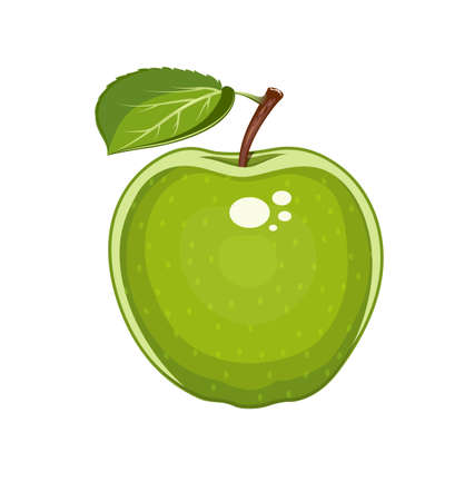 apple leaf: Green apple with leaf. Natural sweet fruit. Eps10 isolated white background. Organic healthy  vegan food.