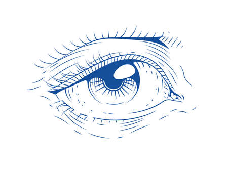 Eye illustration..