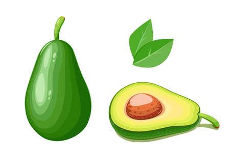 아보카도. 열 대 이국적인 과일입니다. 천연 유기농 건강 식품입니다. 격리 된 흰색 배경입니다.