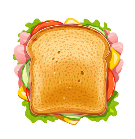 Sandwich. Fried bread with cucumber, bacon, tomato, cheese, lettuce. Vegetarian Fast food lunch. Bread and butter for breakfast. Supper organic meal. Delicious Snack. Isolated white background. Cook food. EPS10 vector illustration.