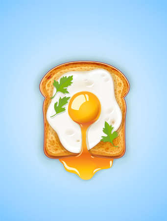 Sandwich with Fried egg. Fast food. Cooking lunch, dinner, breakfast. Natural product. Cooked omelet. Scrambled eggs. Vector illustration.