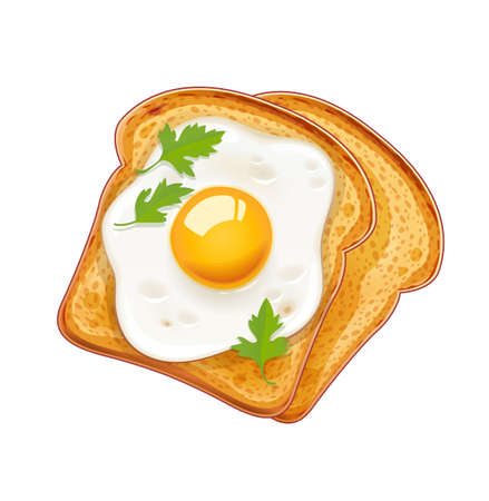 Sandwich with Fried egg. Fast food. Cooking lunch, dinner, breakfast. Natural product. Cooked omelet. Scrambled eggs. EPS10 vector illustration. Isolated white background.