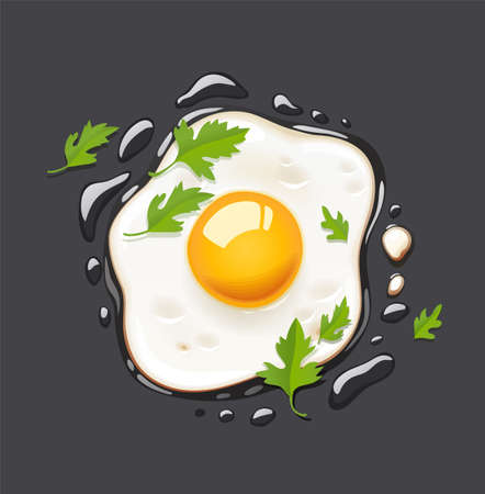 Fried egg. Fast food. Cooking lunch, dinner, breakfast. Natural product. Cooked omelet. Scrambled eggs. Dark background. EPS10 vector illustration.