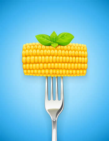 Corn cob at fork. Organic food. Corncob natural meal. Ripe Maize. Product for cooking popcorn. Healthy eating. Vegetable. Realistic foodstuff. Blue Background. vector illustration.