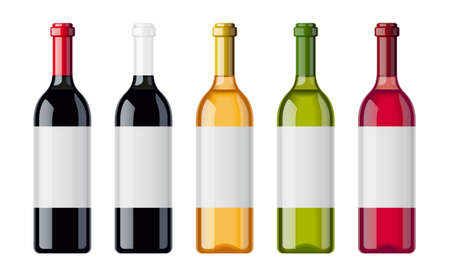 Set of wine bottles with different beverage sort. Bottle of muscat, pinot, aligote, cabernet, chardonnay, sauvignon, chateau. Alcohol drink collection. Sommelier bar. Isolated white background. EPS10 vector illustration. Illustration