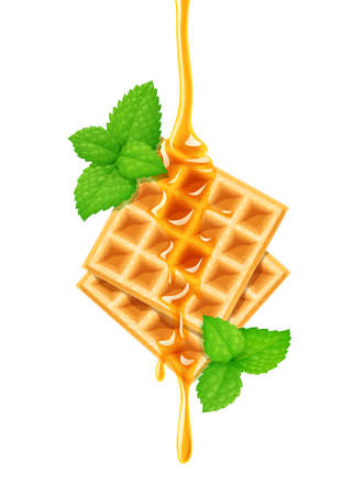 Belgian Waffle, honey and peppermint. Dessert sweetness. Concept design for desserts menu. Lunch cooking. Isolated white background.