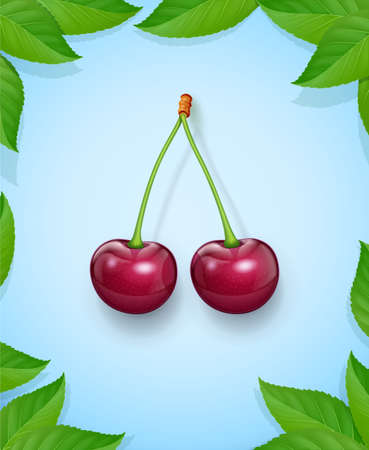 Two Cherries with green leaf. Fresh, juicy, ripe fruit. Red realistic cherry berry. Vegetarian healthy food. Delicious dessert. Organic eating. Background. EPS10 vector illustration. Ilustração