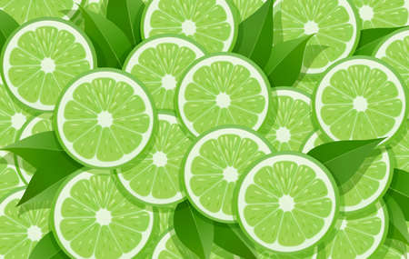 Lime and leaf. Citrus pattern. Tropical fruit background. Organic natural fruity food. Vegetarian healthy eating design. EPS10 vector illustration.