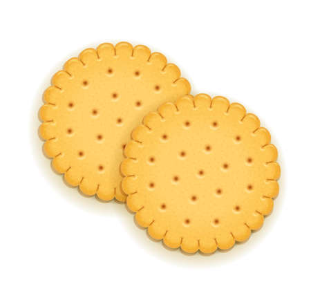 Two delicious round biscuit. Sweet cookie. Delicious cookies. Realistic cracker. Yummy crackers. Breakfest snack. Tasty food. Isolated white background. EPS10 vector illustration.
