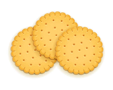 Three delicious round biscuit. Sweet cookie. Delicious cookies. Realistic cracker. Yummy crackers. Breakfest snack. Tasty food. Isolated white background. EPS10 vector illustration.