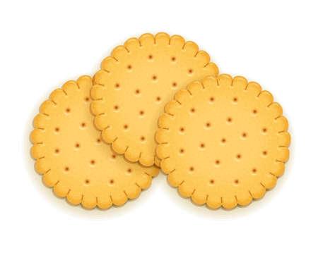Tre deliziosi biscotti rotondi. Biscotto dolce. Biscotti deliziosi. Cracker realistici. Cracker deliziosi. Spuntino per la colazione. Cibo gustoso. Sfondo bianco isolato. Illustrazione vettoriale Eps10. Vettoriali