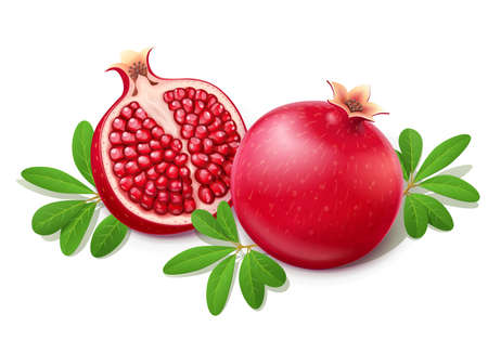 Ripe juicy pomegranate. Cuted Fruit with green leaves. Vegetarian food. Two Natural organic fresh plant. Isolated white background. EPS10 vector illustration. Çizim