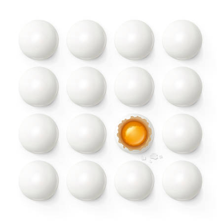 Set of eggs with yolk and shell. Product for cooking breakfast. Egg tray. Organic food. Top view realistic raw natural foodstuff. Isolated On white background.