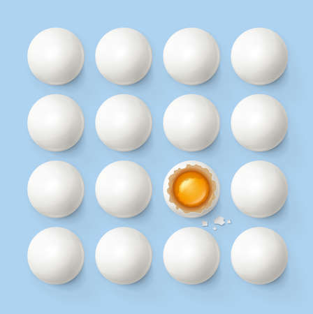 Set of eggs with yolk and shell. Product for cooking breakfast. Egg tray. Organic food. Top view realistic raw natural foodstuff on blue background.