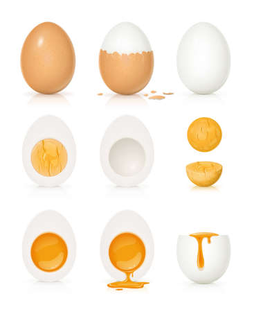 Set of eggs with yolk and shell. Product for cooking breakfast. Boiled egg. Organic food. Front view realistic natural foodstuff. Isolated on white background.