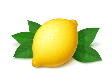 Ripe, juicy lemon with green leaf. Realistic tropical fruit. Natural citrus. Product for fresh lemonade. Organic food. Isolated white background. EPS10 vector illustration.