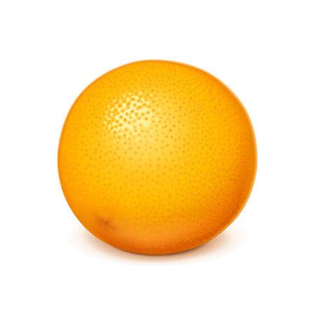 Ripe, juicy orange. Realistic tropical fruit. Organic food. Isolated white background.
