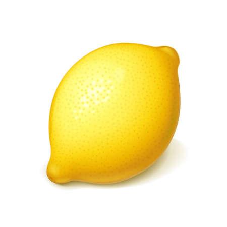 Limón maduro y jugoso. Fruta tropical realista. Cítricos naturales. Producto para limonada fresca. Alimentos orgánicos. Fondo blanco aislado. Ilustración de vector Eps10. Ilustración de vector