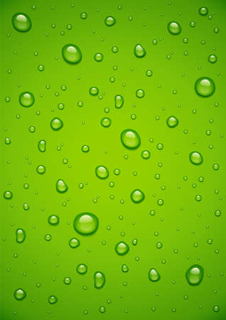 Water drop at green background. Droplet spray at glass. Aqua bubble wallpaper. Eps10 vector illustration.