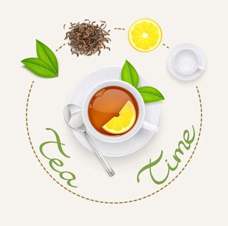 Tea cup with fresh green and dried leaves. Traditional japanese and chinese tonic drink. Set of tea ingredients for breakfast. Isolated white background. Eps10 vector illustration. Banco de Imagens - 123993541