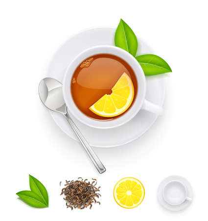 Tea cup with fresh green and dried leaves. Traditional japanese and chinese tonic drink. Set of tea ingredients for breakfast. Isolated white background. Eps10 vector illustration. Imagens - 123824900