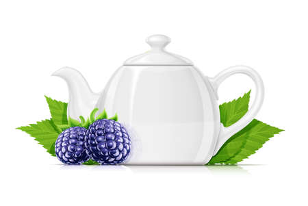Blackberry tea. Fresh organic herbal drink. Juicy ripe fruit. Vegetarian meal. Healthy food. Yummy blackberries, Isolated on white background. Eps10 vector illustration.