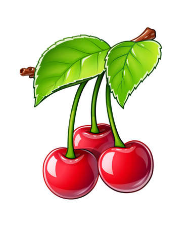 Cherry. Ripe juicy berry. Red fruit with leaf, Isolated on white background.