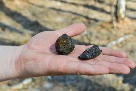 fragments of Chelyabinsk meteorite found in the winter and spring of 2013 near the city Chebarkul Foto de archivo