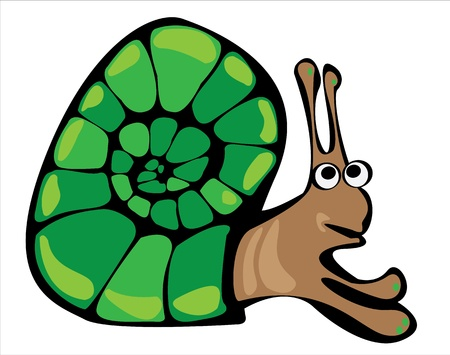 cartoon vector snail isolated on white background Stock Vector - 17990901
