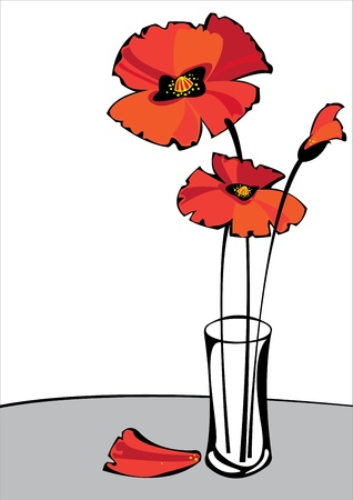 red vector poppies in vase isolated on white background with copyspace