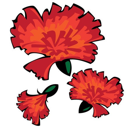 three vector red carnations isolated on white background