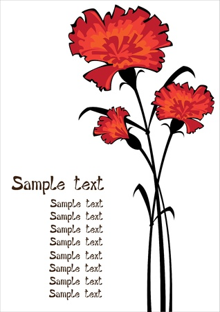 red carnations isolated on white background with copyspace Stock Vector - 18227817