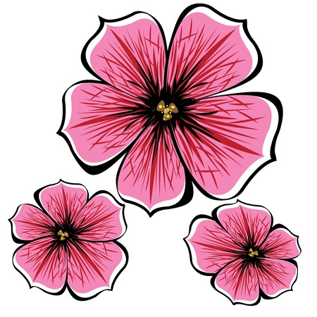 petunia: pink vector petunia flowers isolated on white background