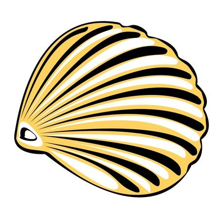 one vector orange shell isolated on white background Illustration