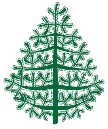 spruce vector on white background