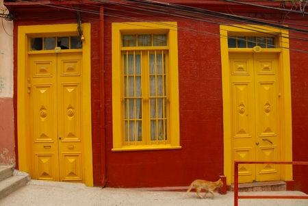 inseparable: Cat goes past the house with red walls and yellow door and window Stock Photo