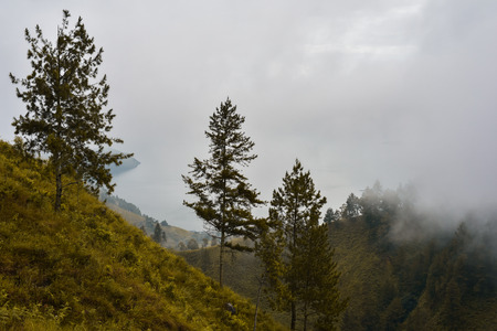 indonesian biodiversity: Thick mist from the waterfall Sipisopyso on the shore of Lake Toba is spread over the hill, covered with scattered trees (Sumatra, Indonesia)
